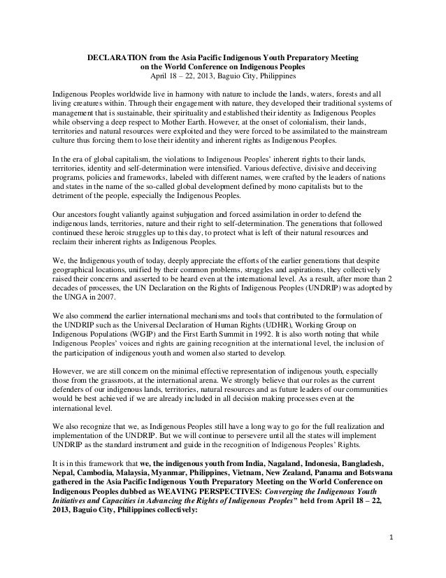 1 DECLARATION from the Asia Pacific Indigenous Youth Preparatory Meeting on the World Conference on Indigenous Peoples Apr...