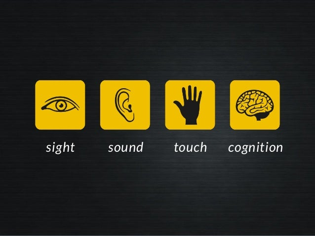 sight touchsound cognition