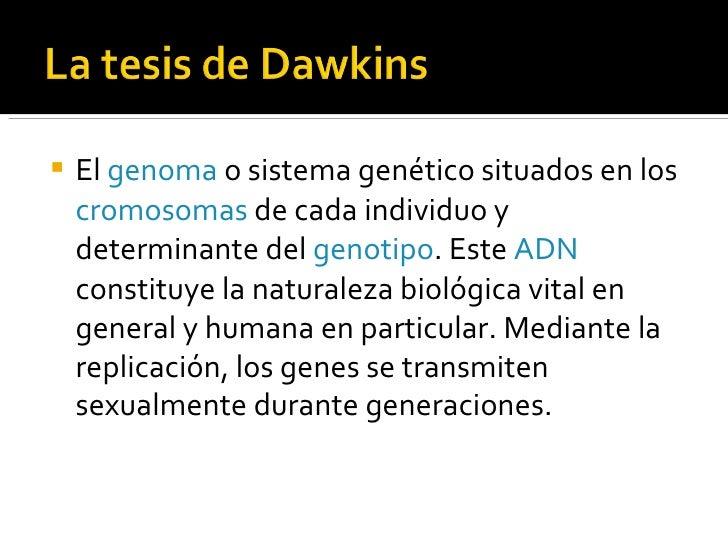 <ul><li>El  genoma  o sistema genético situados en los  cromosomas  de cada individuo y determinante del  genotipo . Este ...