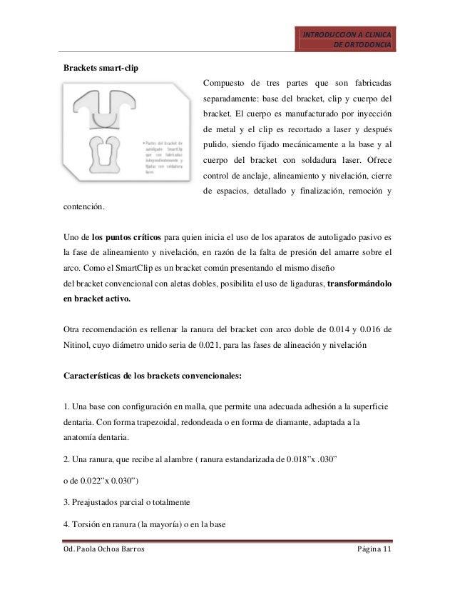 Único Anatomía De Una Ranura Inspiración - Imágenes de Anatomía ...