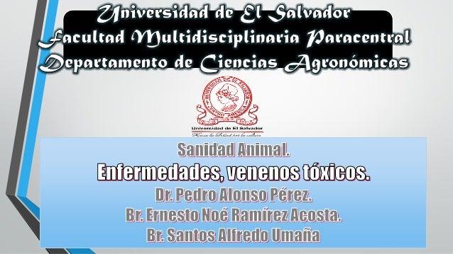 ENFERMEDADES TOXICOVENENOSAS CAUSAS