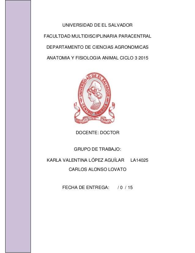 UNIVERSIDAD DE EL SALVADOR FACULTDAD MULTIDISCIPLINARIA PARACENTRAL DEPARTAMENTO DE CIENCIAS AGRONOMICAS ANATOMIA Y FISIOL...