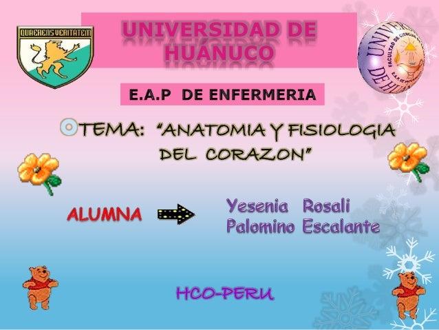 Anatomia y Fisiologia del Corazon (Resumen)