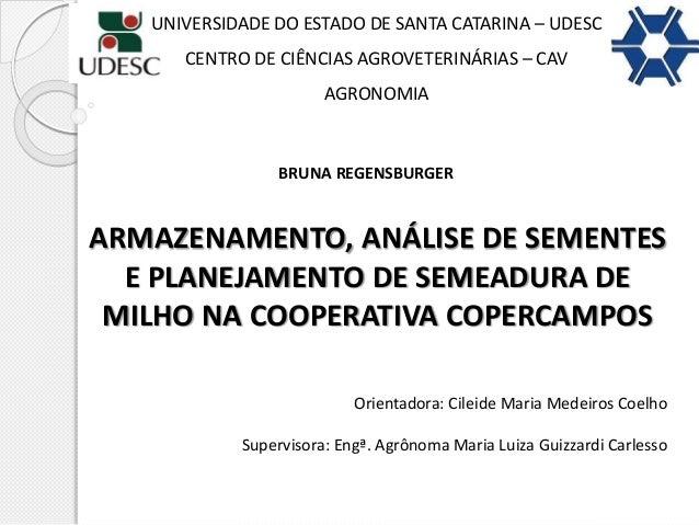 ARMAZENAMENTO, ANÁLISE DE SEMENTES E PLANEJAMENTO DE SEMEADURA DE MILHO NA COOPERATIVA COPERCAMPOS BRUNA REGENSBURGER UNIV...