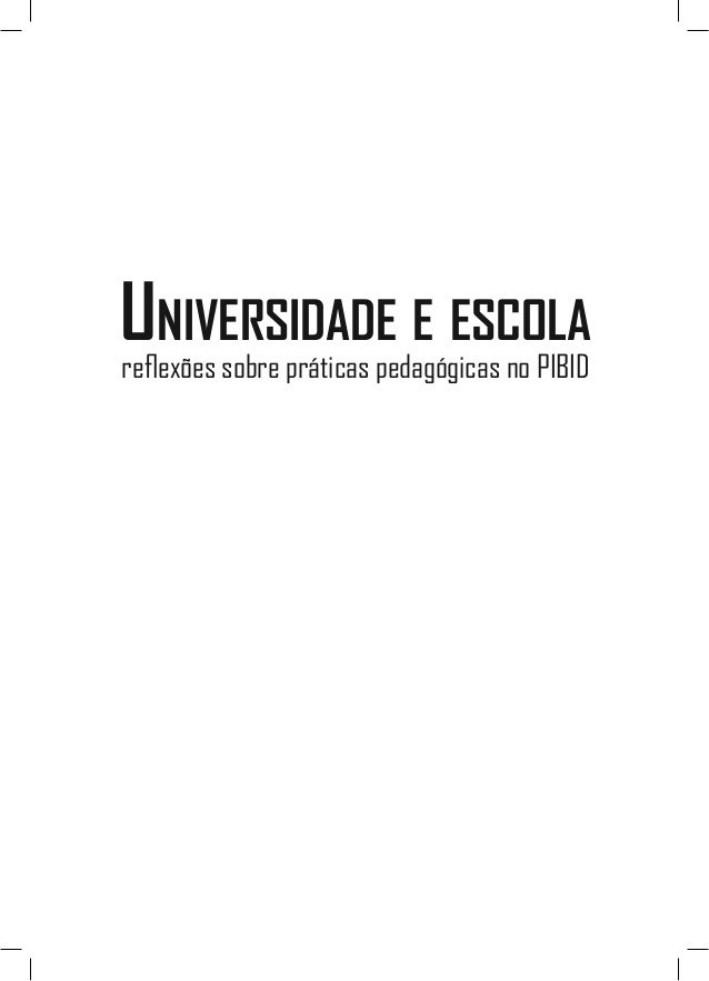 Universidade e escola reflexões sobre práticas pedagógicas no PIBID