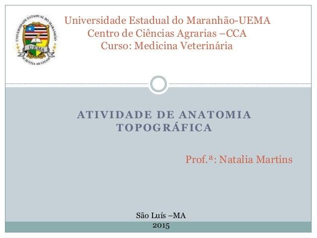 ATIVIDADE DE ANATOMIA TOPOGRÁFICA Universidade Estadual do Maranhão-UEMA Centro de Ciências Agrarias –CCA Curso: Medicina ...