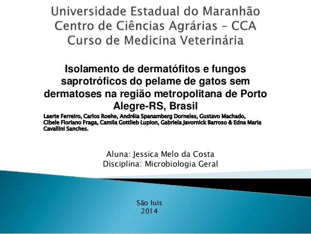 Isolamento de dermatófitos e fungos  saprotróficos do pelame de gatos sem  dermatoses na região metropolitana de Porto  Al...