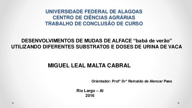 UNIVERSIDADE FEDERAL DE ALAGOAS CENTRO DE CIÊNCIAS AGRÁRIAS TRABALHO DE CONCLUSÃO DE CURSO DESENVOLVIMENTOS DE MUDAS DE AL...
