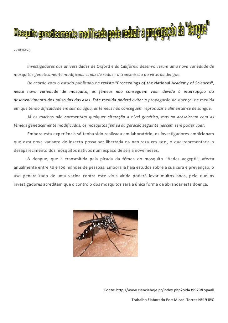2010-02-23            Investigadores das universidades de Oxford e da Califórnia desenvolveram uma nova variedade de mosqu...