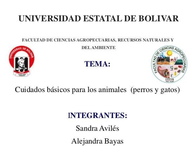 UNIVERSIDAD ESTATAL DE BOLIVAR TEMA: Cuidados básicos para los animales (perros y gatos) INTEGRANTES: Sandra Avilés Alejan...