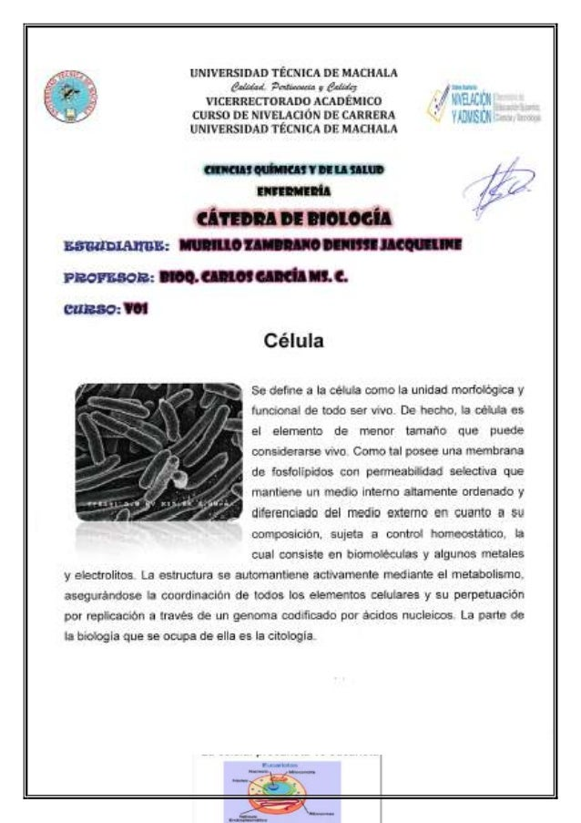 UNIVERSIDAD TÉCNICA DE MACHALA Calidad, Pertinencia y Calidez VICERRECTORADO ACADÉMICO CURSO DE NIVELACIÓN DE CARRERA UNIV...