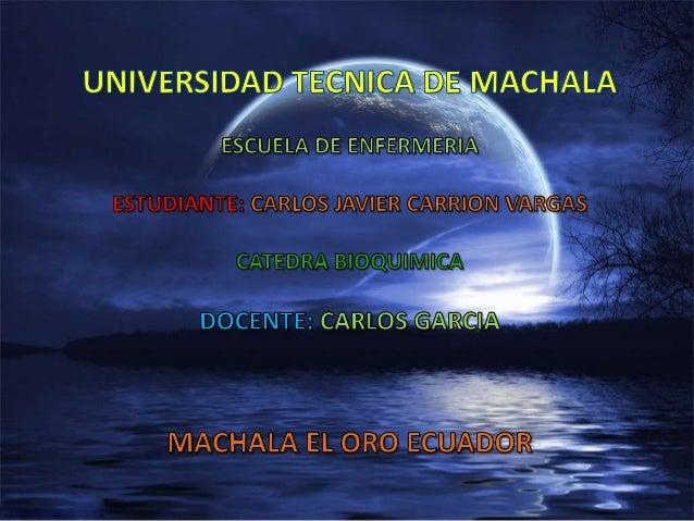 Universidad tecnica de machala xavier