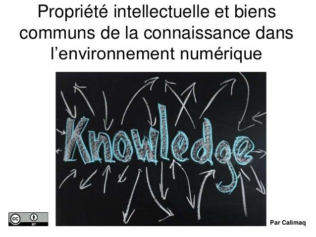 Propriété intellectuelle et biens communs de la connaissance dans l'environnement numérique Par Calimaq