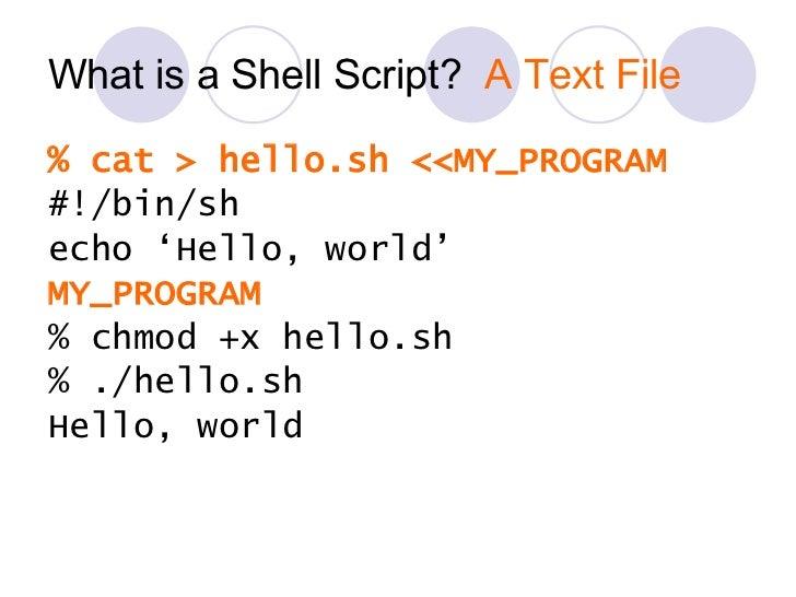 What is a Shell Script?  A Text File <ul><li>% cat > hello.sh <<MY_PROGRAM </li></ul><ul><li>#!/bin/sh </li></ul><ul><li>e...