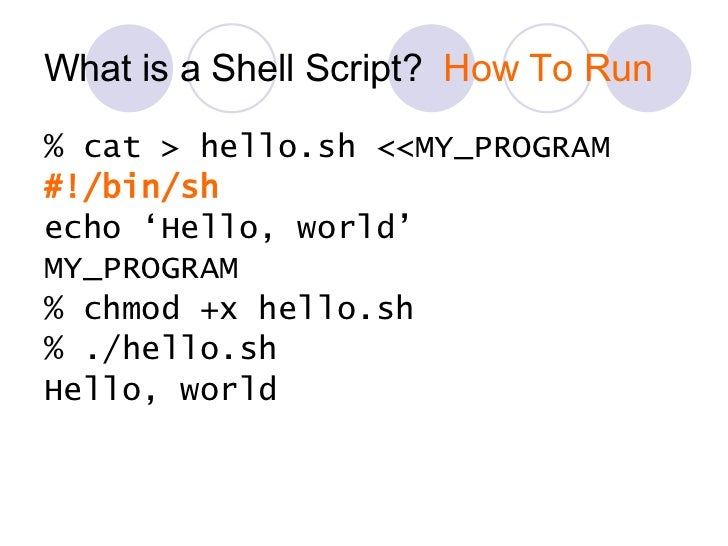basic shell scripting Common shell programs or which can be read from a file called the shell script or shell program shell scripts are interpreted this is the basic shell.