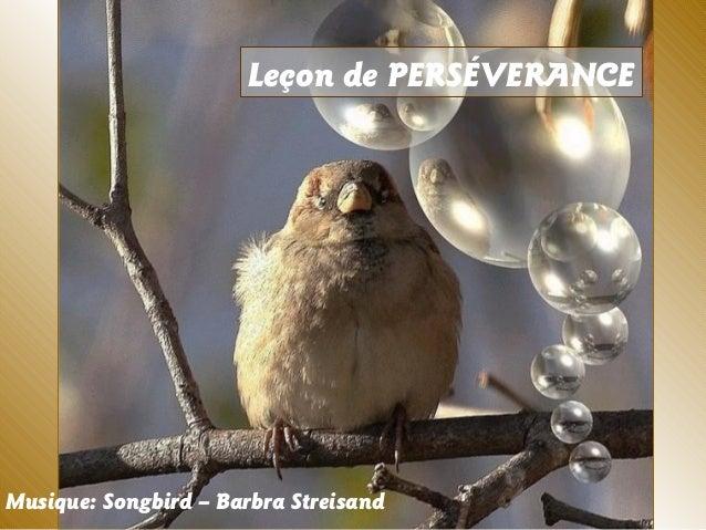 Leçon de PERSÉVERANCE Musique: Songbird – Barbra Streisand
