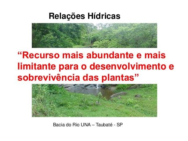 """Relações Hídricas Bacia do Rio UNA – Taubaté - SP """"Recurso mais abundante e mais limitante para o desenvolvimento e sobrev..."""