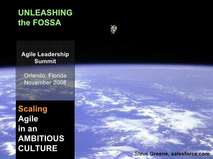UNLEASHING the FOSSA Scaling   Agile in an AMBITIOUS CULTURE Agile Leadership Summit Orlando, Florida November 2008 Steve ...