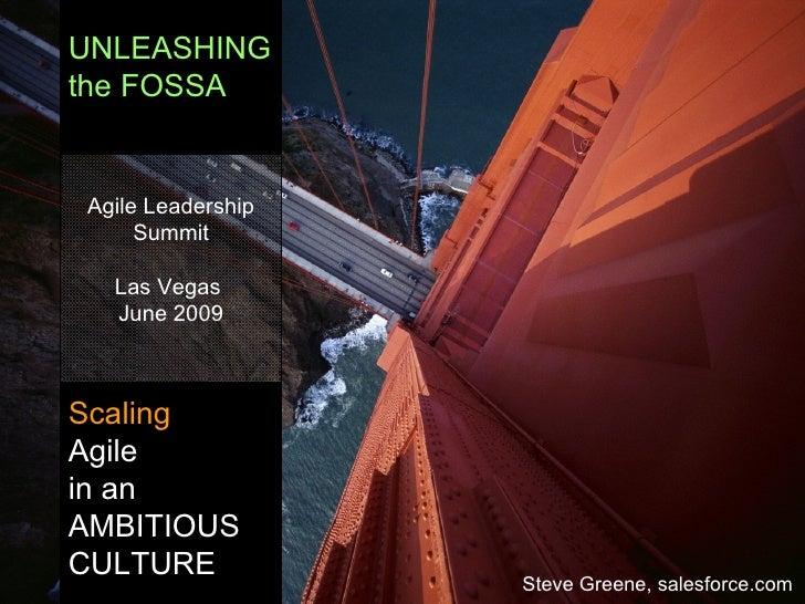 UNLEASHING the FOSSA Scaling   Agile in an AMBITIOUS CULTURE Agile Leadership Summit Las Vegas  June 2009 Steve Greene, sa...