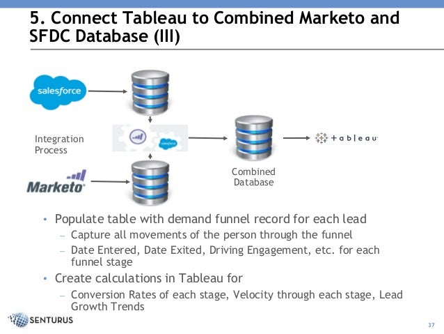 Unlocking Salesforce and Marketo Value with Tableau