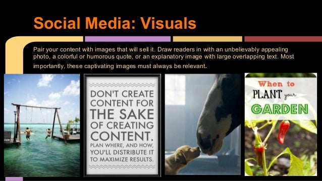 Pair your content with images that will sell it. Draw readers in with an unbelievably appealing photo, a colorful or humor...