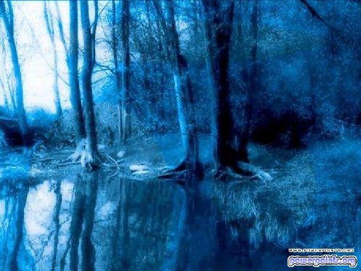 Un lugar en_el_bosque-33602 Slide 3