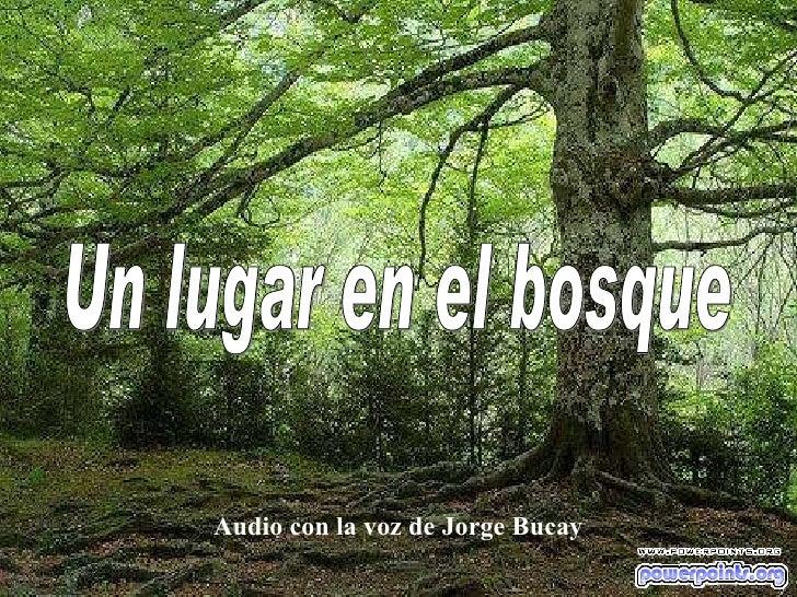 Audio con la voz de Jorge Bucay Un lugar en el bosque