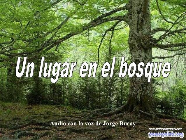 Audio con la voz de Jorge Bucay