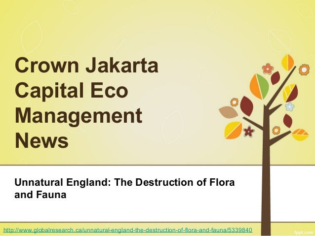 Crown Jakarta Capital Eco Management News Unnatural England: The Destruction of Flora and Fauna http://www.globalresearch....