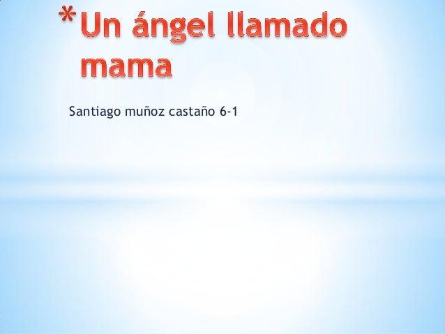 Santiago muñoz castaño 6-1