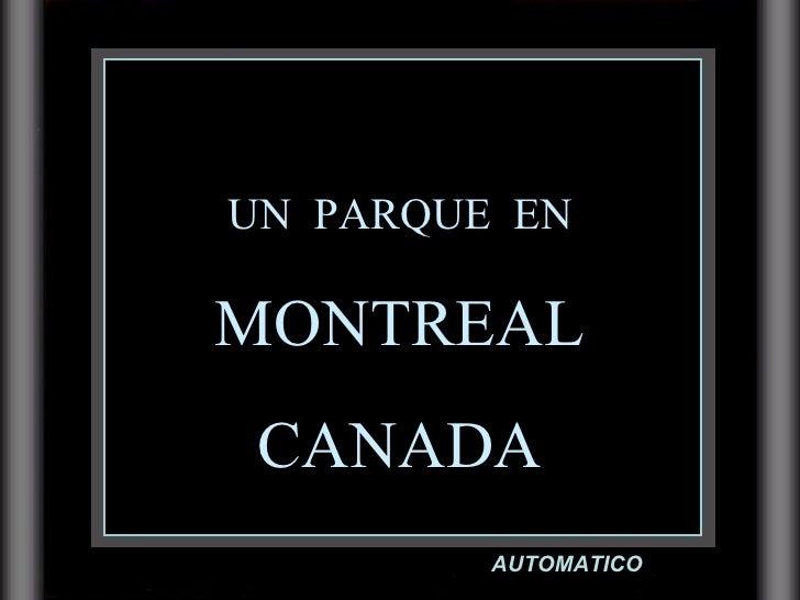 UN  PARQUE  EN MONTREAL CANADA AUTOMATICO