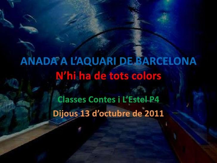 ANADA A L'AQUARI DE BARCELONAN'hi ha de tots colors<br />Classes Contes i L'Estel P4<br />Dijous 13 d'octubre de 2011<br />