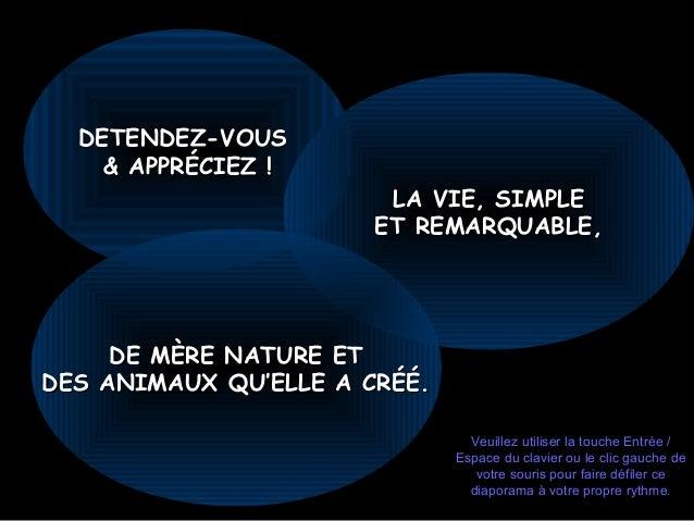 DETENDEZ-VOUSDETENDEZ-VOUS & APPRÉCIEZ !& APPRÉCIEZ ! LA VIE, SIMPLELA VIE, SIMPLE ET REMARQUABLEET REMARQUABLE,, DE MÈRE ...