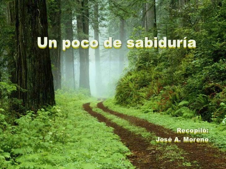 Un poco de sabiduría                    Recopiló:              José A. Moreno