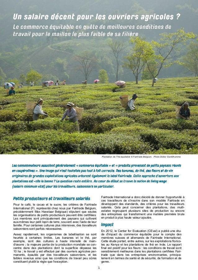 1  Pour le café, le cacao et le sucre, les critères de Fairtrade International (FI, représenté chez nous par Fairtrade Bel...
