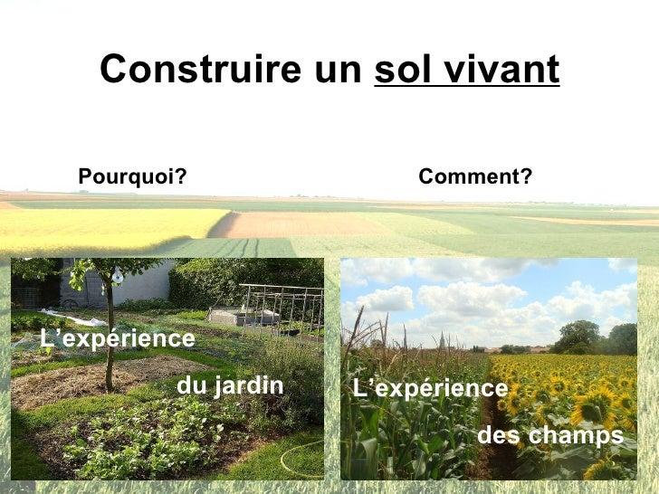 Construire un  sol vivant L'expérience  du jardin L'expérience  des champs Pourquoi? Comment?
