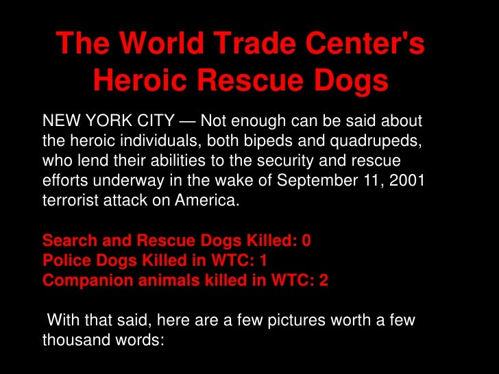 The World Trade Center's Heroic Rescue Dogs<br />NEW YORK CITY — Not enough can be said about the heroic individuals, both...