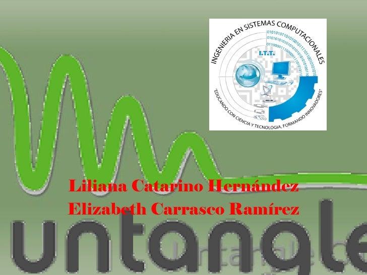 Liliana Catarino HernándezElizabeth Carrasco Ramírez