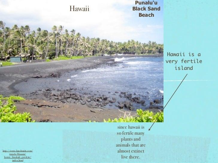 Punaluu                            Hawaii           Black Sand                                               Beach        ...
