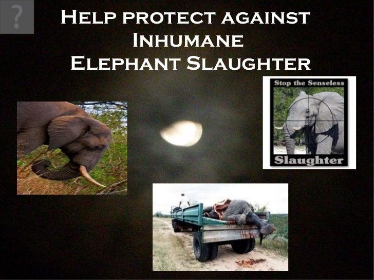 Help protect against  Inhumane  Elephant Slaughter
