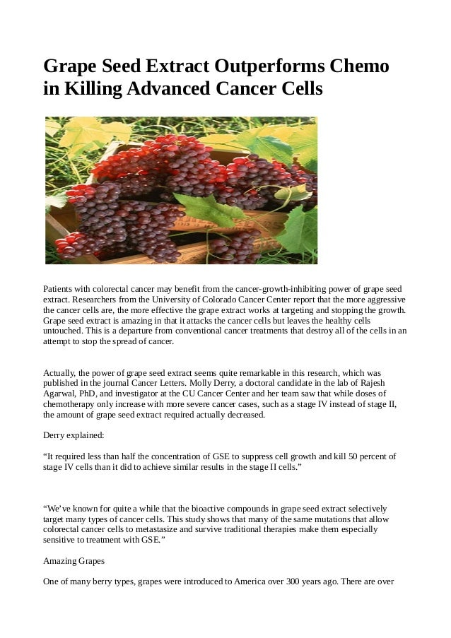 Grape Seed Extract Outperforms Chemo in Killing Advanced Cancer Cells Patients with colorectal cancer may benefit from the...