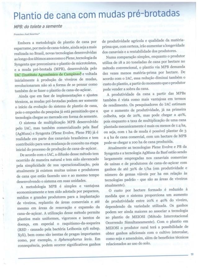 revista Coplacana