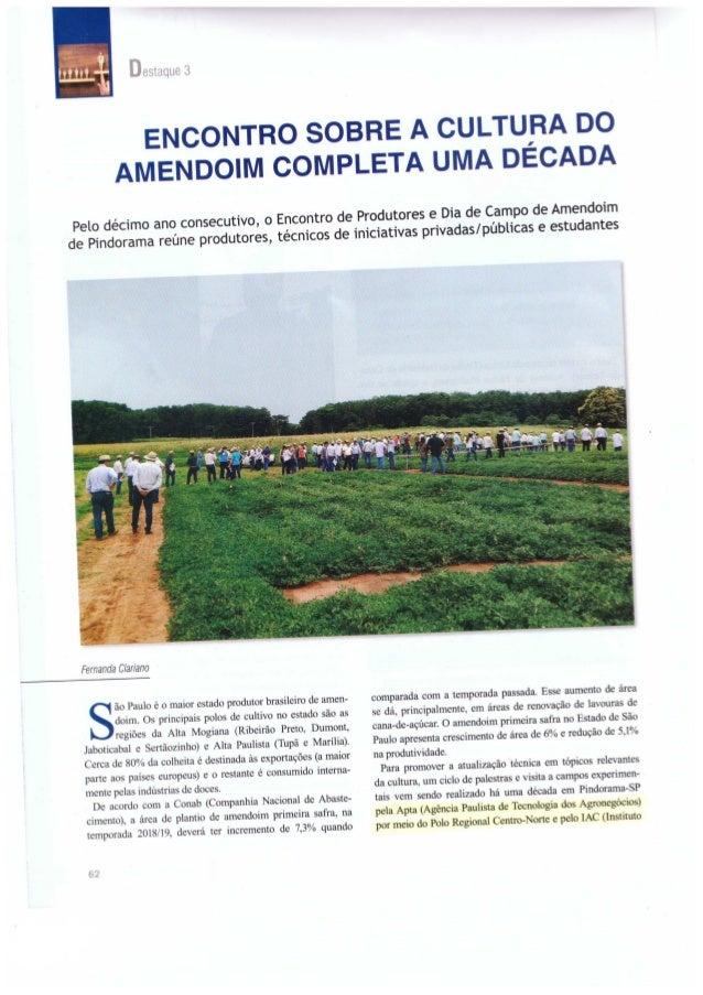 O Encontro sobre a Cultura do Amendoim Completa uma década.