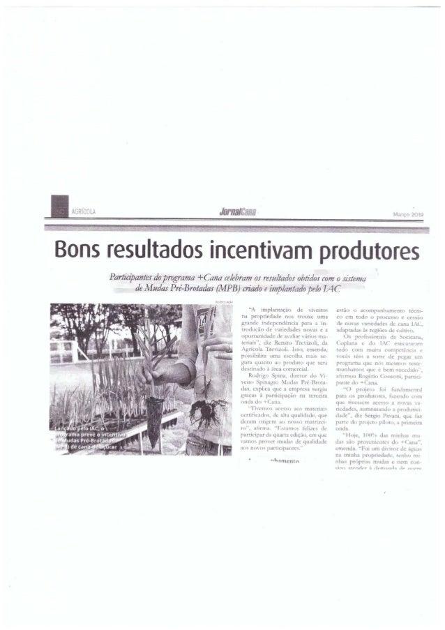 Bons resultados incentivam produtores