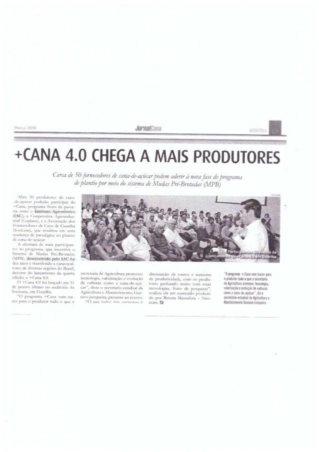 + Cana 4.0 chega com mais produtores