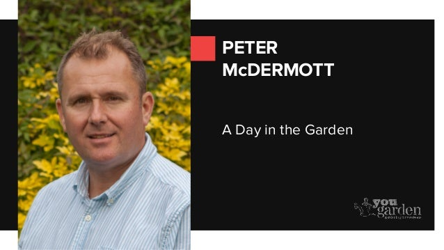 PETER McDERMOTT A Day in the Garden