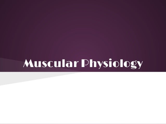 Muscular Physiology