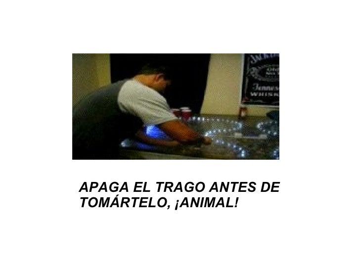 APAGA EL TRAGO ANTES DE TOMÁRTELO, ¡ANIMAL!