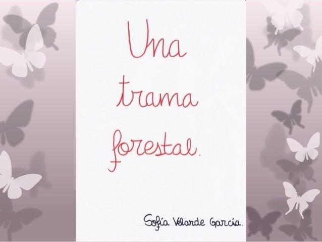 Una trama forestal
