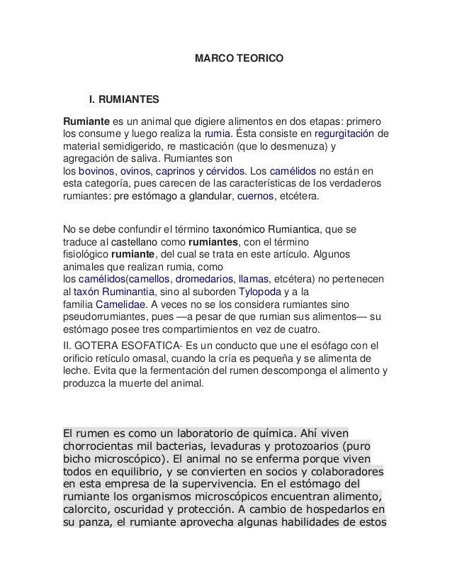 Fantástico Cuerno De Chivo Anatomía Colección de Imágenes - Anatomía ...